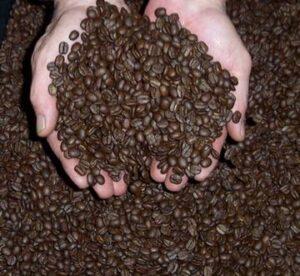 don adan coffee